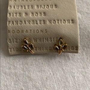 Botanical Post Earrings